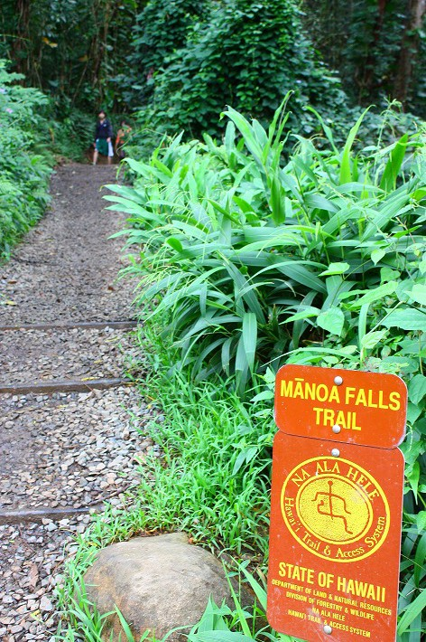 ワイキキ近くの簡単トレッキング その1 何度行っても飽きないマノアの滝はうるおいたっぷり!